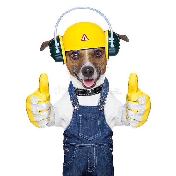 Construction dog2 - Copy.jpg
