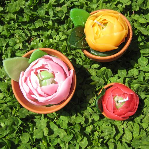 鉢植えキャンドル