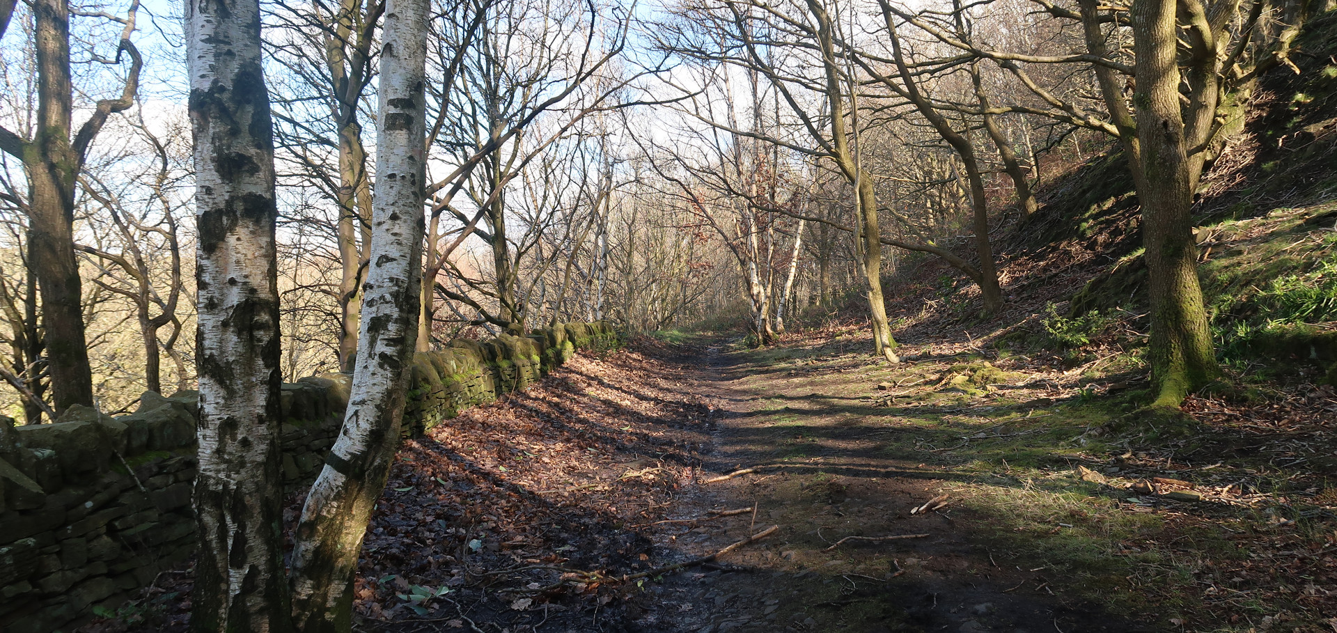 Old Walkways and Woodlands Walk