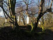 Chris Ruffoni - Marsden woods.jpg