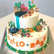 Safar Baby Shower Cake