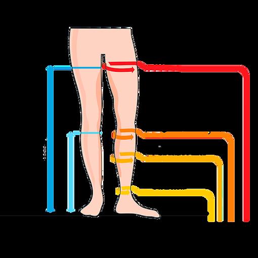 Como edir piernas