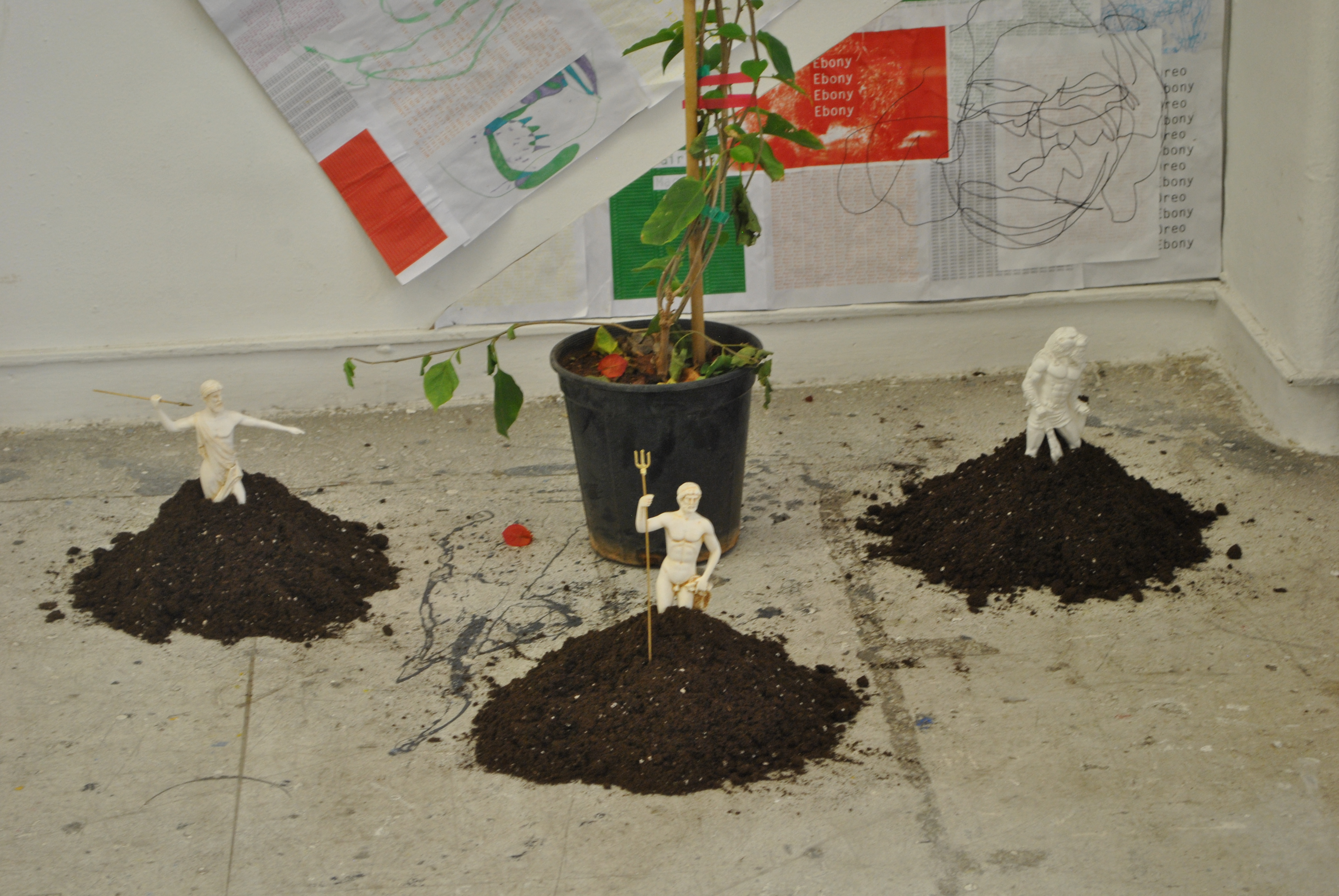 Colonise Installation