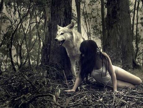 Cuando el Corazón es un cazador solitario
