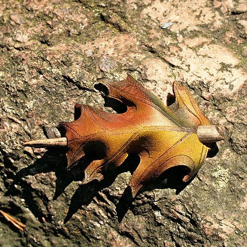 Hiuslehti - Hair Leaf