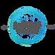 Seyda_Toscali_Logo.png