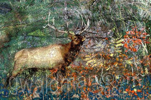 Elkouflage
