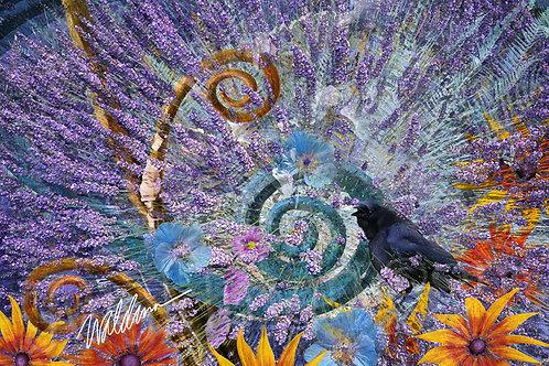 Lavender Solstice- 5x7 art card