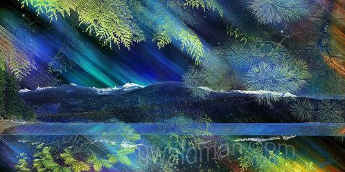 Priest Lake Aurora