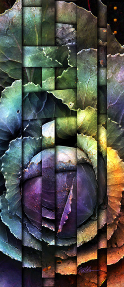 Woven Cabbage II