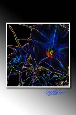Neon Trumpet-charcoal