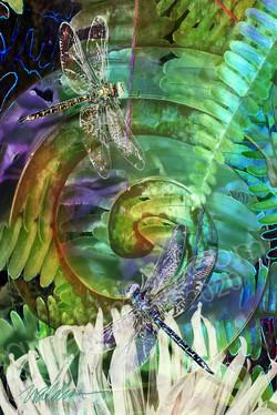 Spiral Dragonfly Detail 3