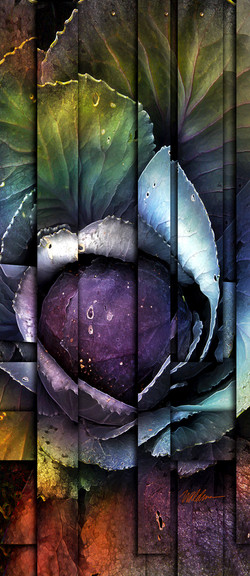 Woven Cabbage I