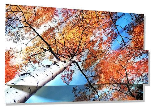Autumn Klimt Collage