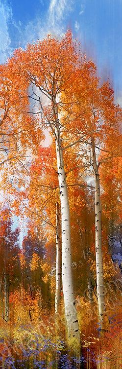 Autumn Crisp III