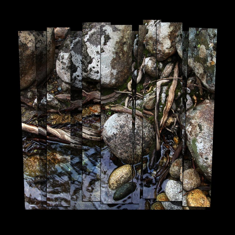 Roots & Rocks II