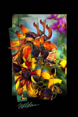 Autumn Daisy Bouquet
