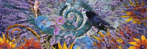 Lavender Solstice III