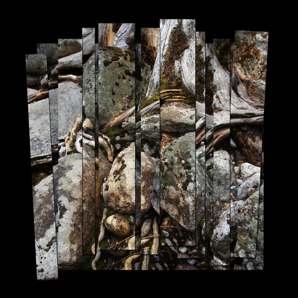 Roots & Rocks I