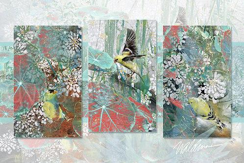 Summer Finch Trio- 5x7 art card