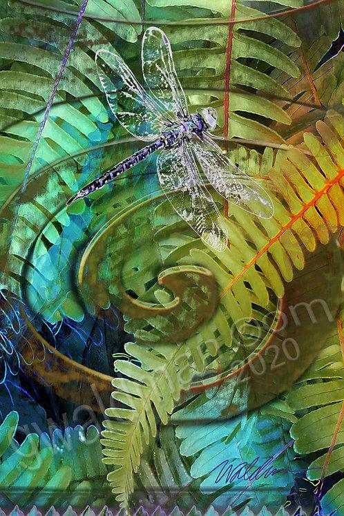 Spiral Dragonfly-5x7 art card