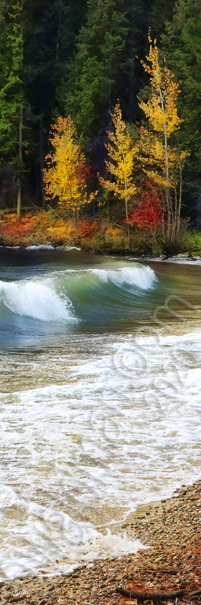 Autumn Waves
