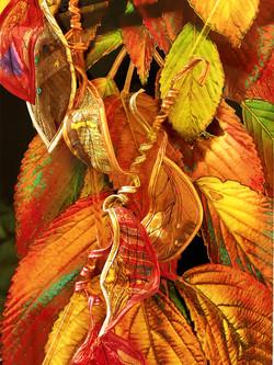 Autumn Shade-detail