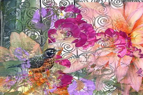 Spiral Robin