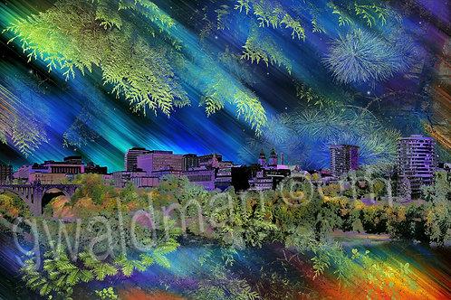 Spokane Lilac Aurora