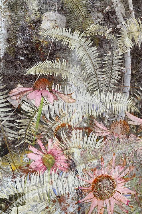 Coneflower Jungle