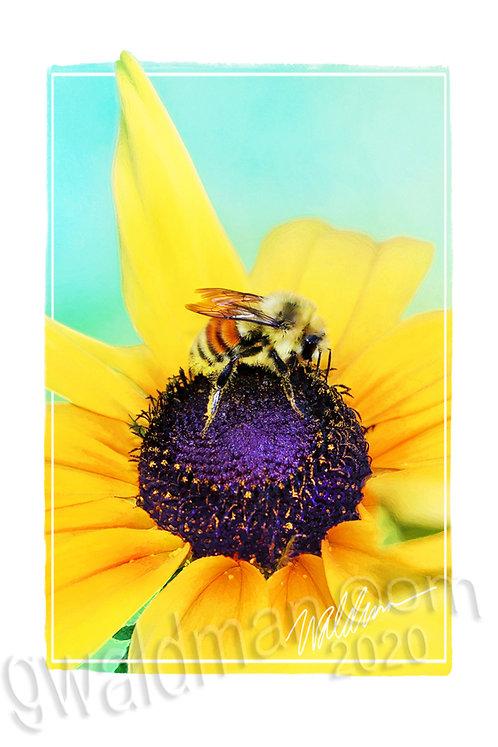 Lil' Bee-5x7 art card
