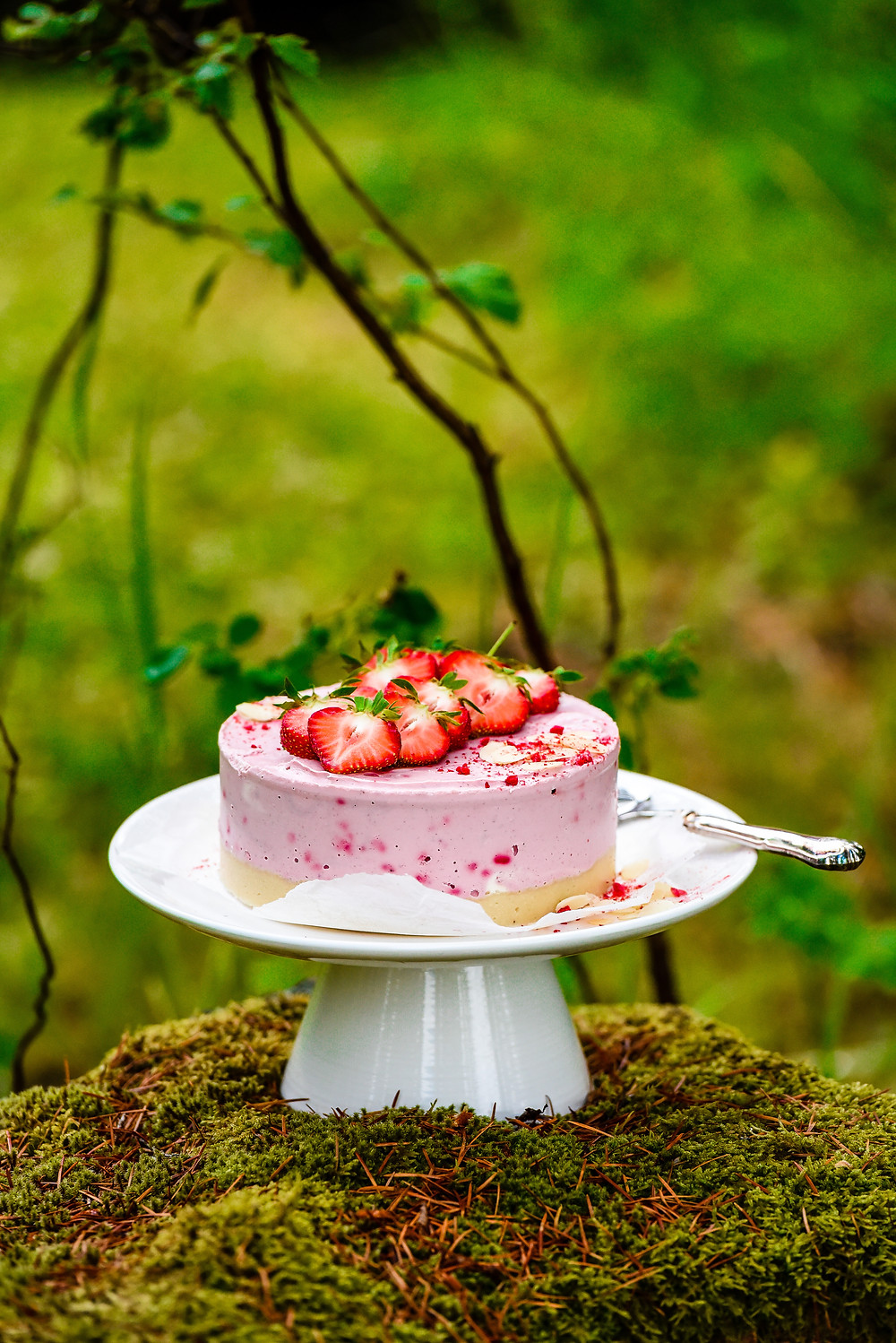 raw cake, raw dessert, strawberry cake, raw dessert recipe