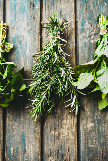 5 Garden Herbs for Building Your Immune System