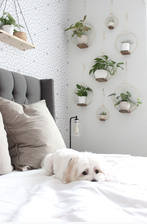 Cozy Transitional Modernism: Clean Lines, Neutral Palettes and Comfort