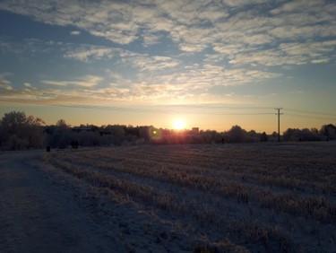 Turku auf den Feldern.jpg