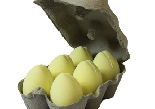 6 Yellow eggs
