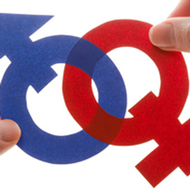 Sexuality and Gender Workshop