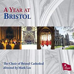 A Year at Bristol (2018)