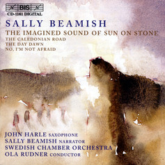 Beamish: The Imagined Sound of Sun on Stone