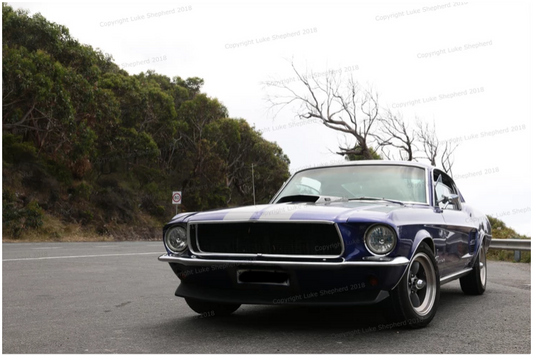 Drive a Classic Mustang Fastback.png