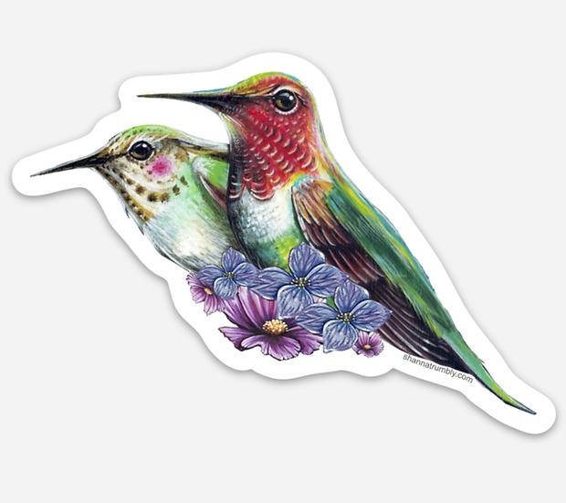 """Hummingbirds Sticker 4"""" x 2.8"""""""