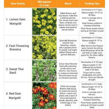 Seed Mat-Set of 3 (1-Flower, 1-Herb, 1-Power Greens)