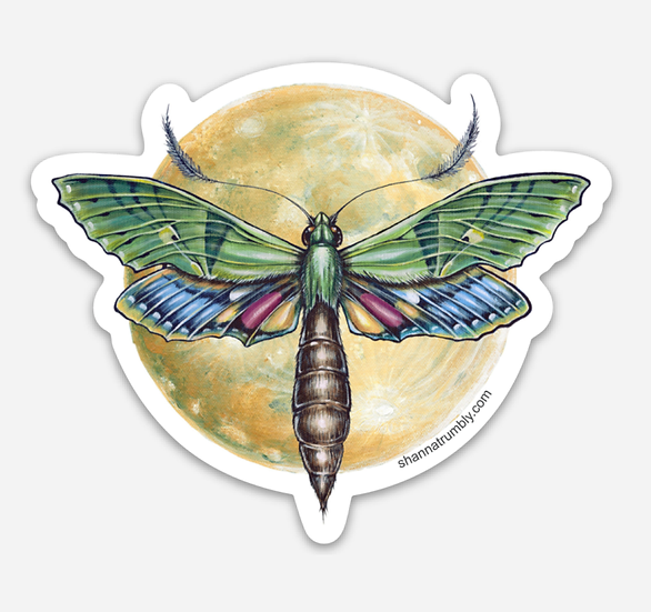 "Moth & Moon Sticker 3.5"" x 3.17"""