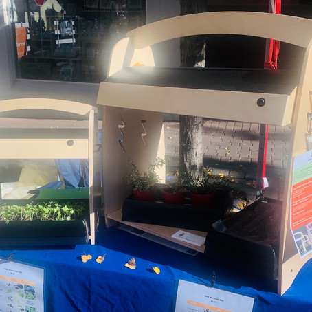 Urban Begonia's featuring LED Habitat at Local Central Oregon event.