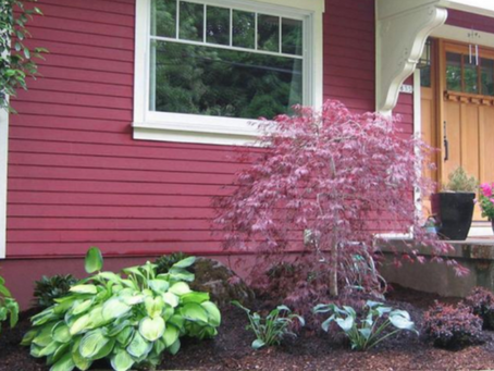 4 Spring Landscaping Ideas for Homeowners who Hate Yardwork