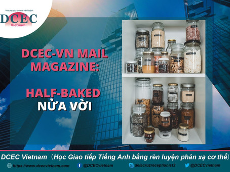 DCEC-Vietnam Mail Magazine: Half-baked - Nửa vời