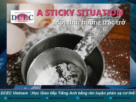 DCEC-VN Mail Magazine: A Sticky Situation - Một tình huống trắc trở