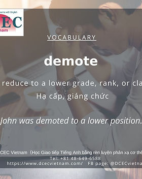 Copy of Demote Vietnam.jpg