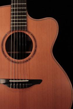Avalon Guitars A1-20CN Hybrid Model