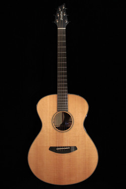 Oregon Series Concert Model